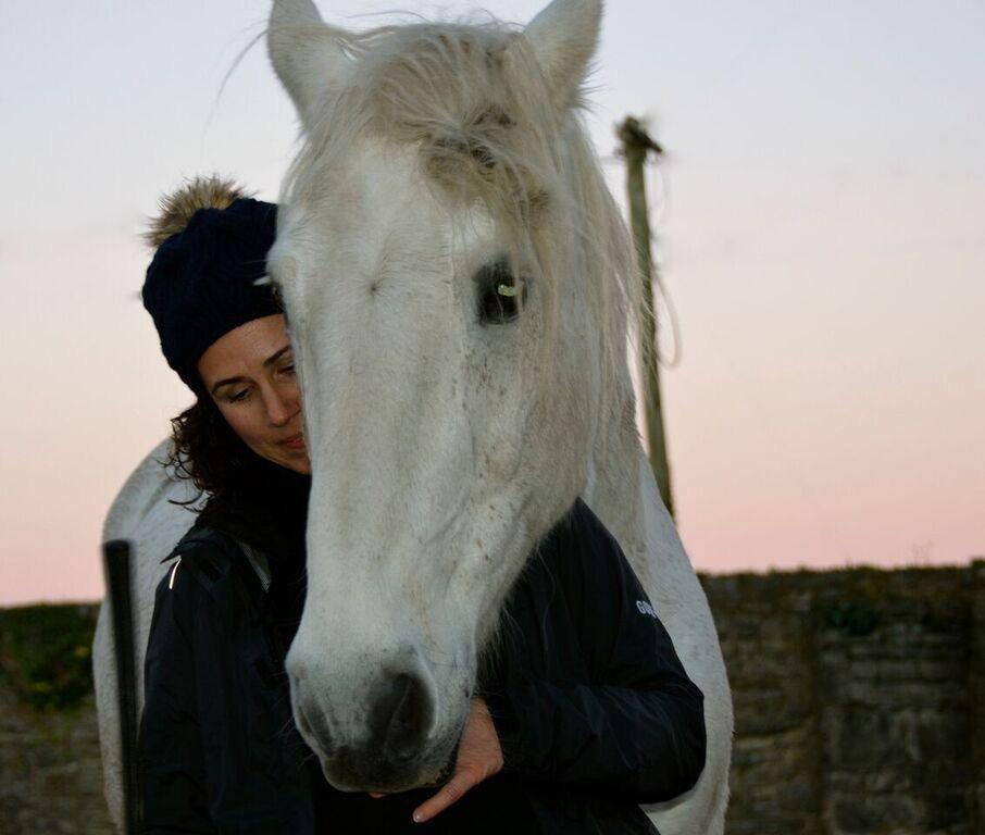 Harmony Horse and Human